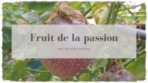 Le fruit de la passion: un anti-oxydant naturel