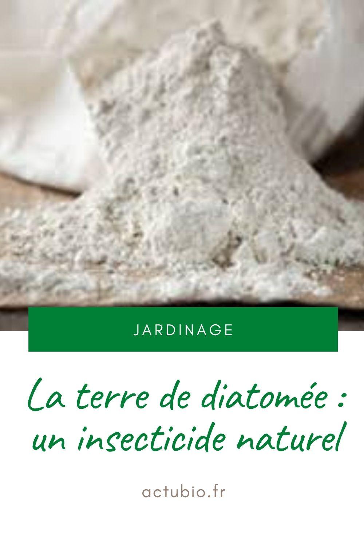 Terre de diatomée, un insecticide naturel