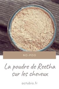 Read more about the article Tout savoir sur Poudre de Reetha pour les cheveux