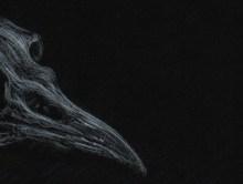 Artiste | Interview de Jonathan Nicolas