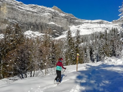 Two backcountry ski routes in Passy Plaine-Joux