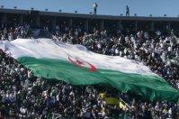 VIVA Algérie supporter