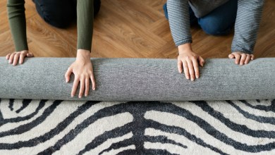 Photo of Get a Clean Rug with These 3 Tips