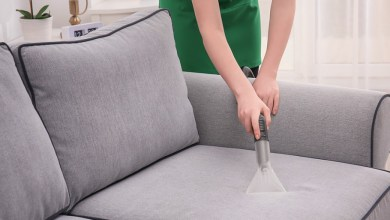 Photo of The Basics of Couch Cleaning