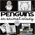 Engage your class in an exciting hands-on experience learning all about penguins! This Penguin Animal Study is perfect for science in Preschool, Pre-K, Kindergarten, First Grade, and Second Grade classrooms and packed full of inviting science activities. Students will learn about the difference between penguins and puffins, animals with and without webbed feet, parts of a penguin, and a penguin's life cycle. When students are done they can complete a penguin research project. This pack is great for homeschoolers, kids craft activities, and to add to your unit studies!