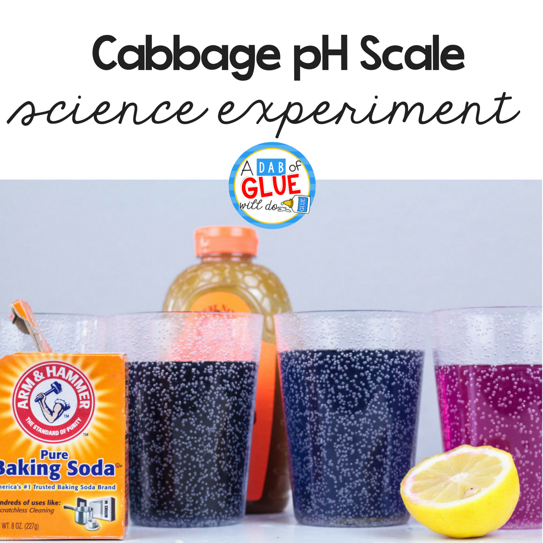 Cabbage Ph Science Experiment For Kids