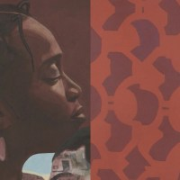 #5WomenArtists. Un breve video su Njideka Akunyili Crosby