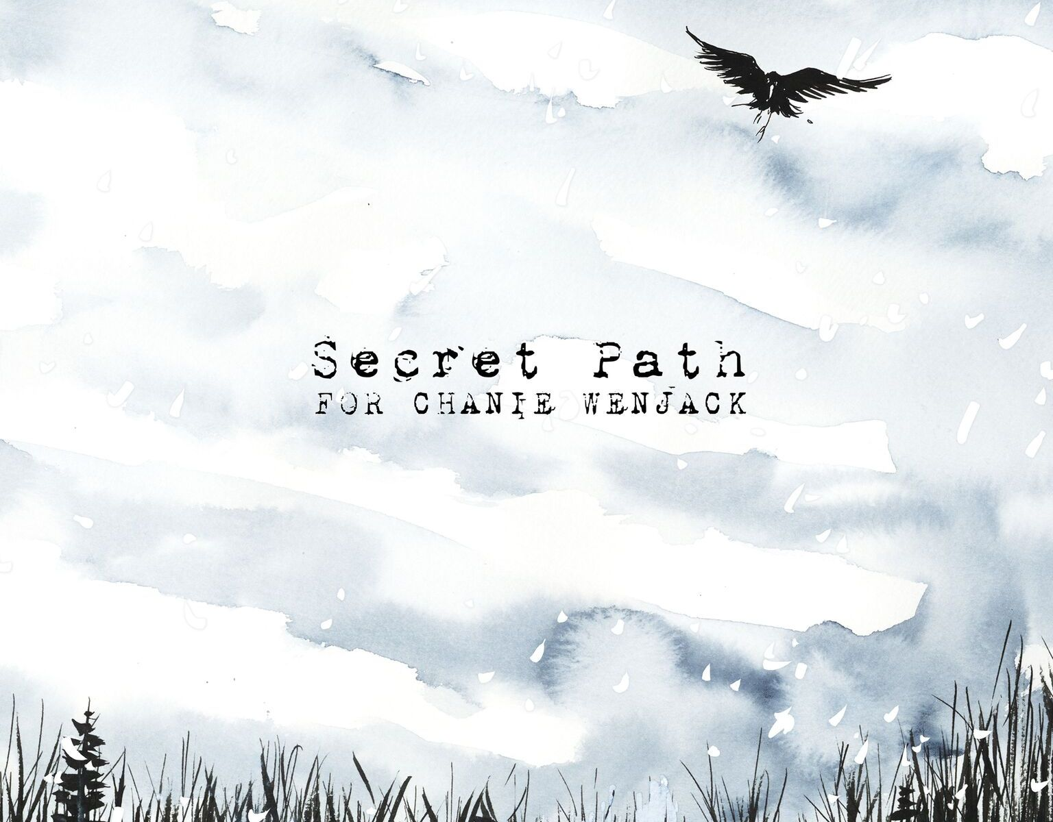 Secret Path by Gord Downie and Jeff Lemire