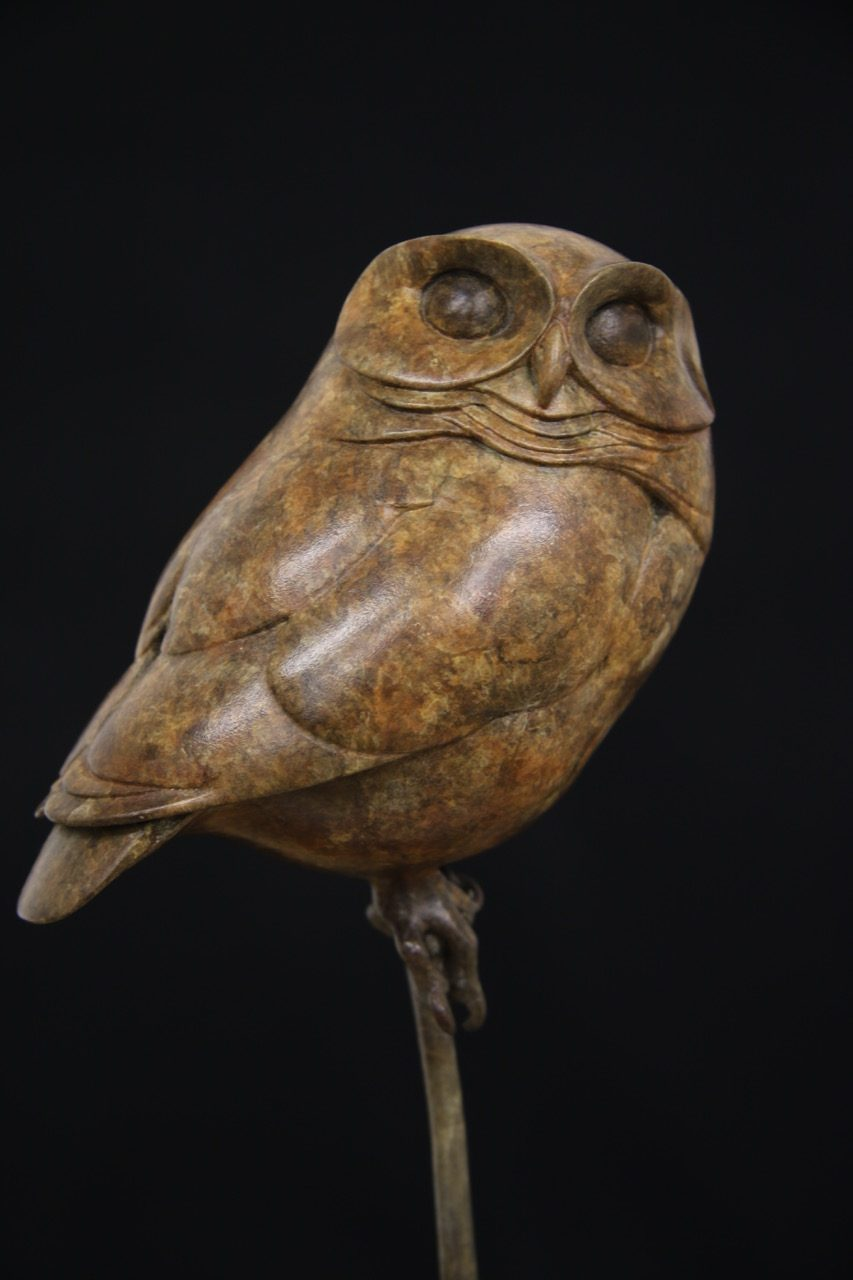 Bronze Little Owl Adam Binder Sculptures