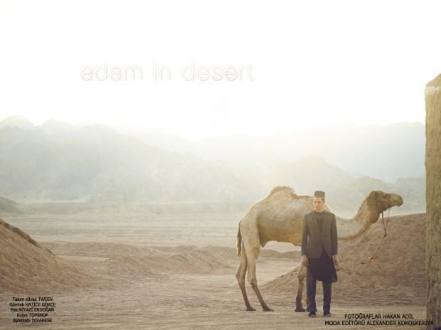 DESERT1--copy