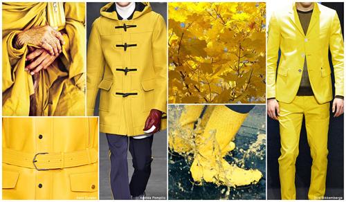 hardal sarısı