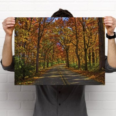 A country road meandering through a forrest of autumns colored trees.