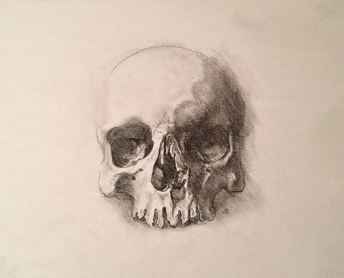 Charcoal skull drawing for Should I Go To Art School post