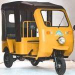 What Will E rickshaws be like in Next 10 Years