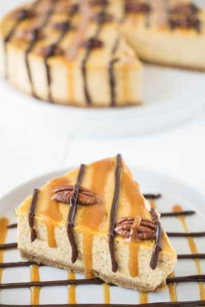 Pumpkin Turtle Cheesecake