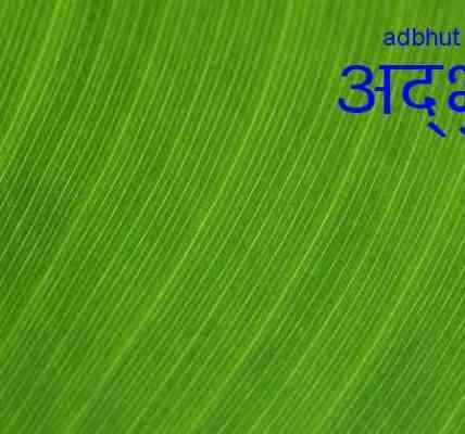 Editorial | Issue 20 | Adbhut.in