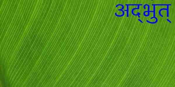 Editorial   Issue 20   Adbhut.in