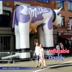 Inflatable Display