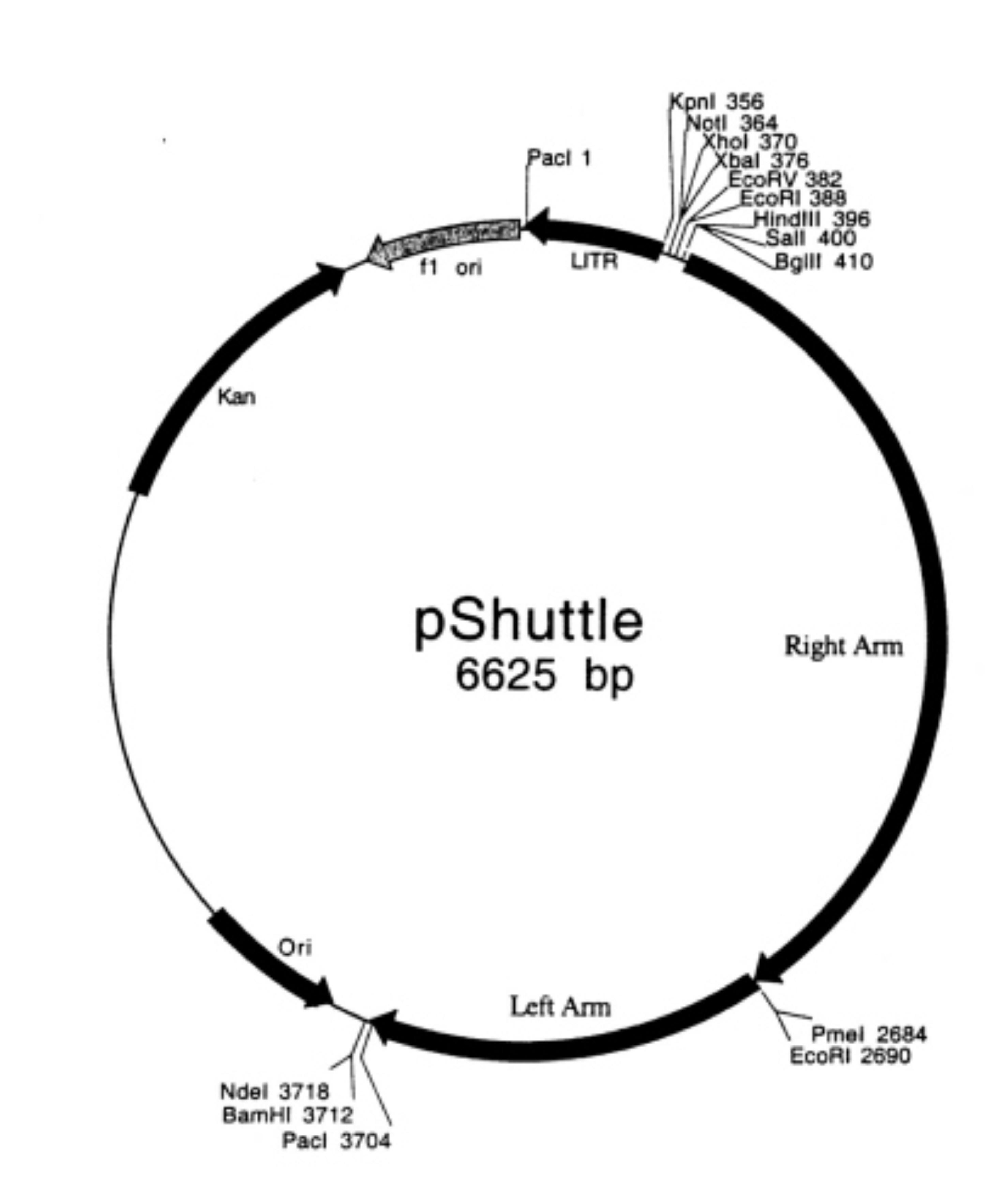 Addgene Pshuttle
