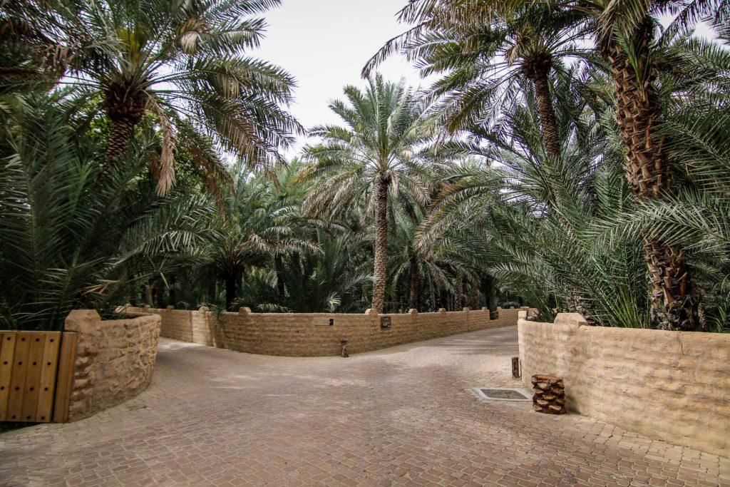 al_ain_oaza