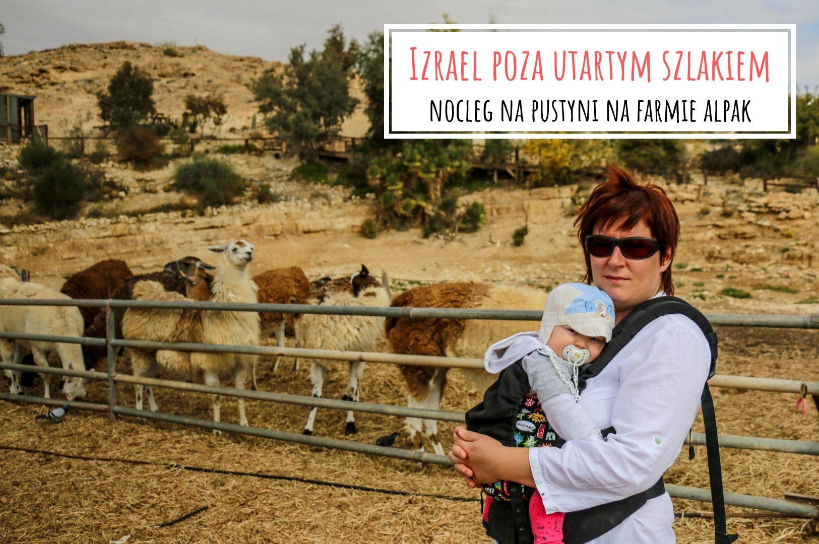 Izrael_nocleg_na_pustyni