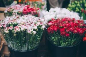 fleuriste: comment augmenter ses ventes grâce à internet