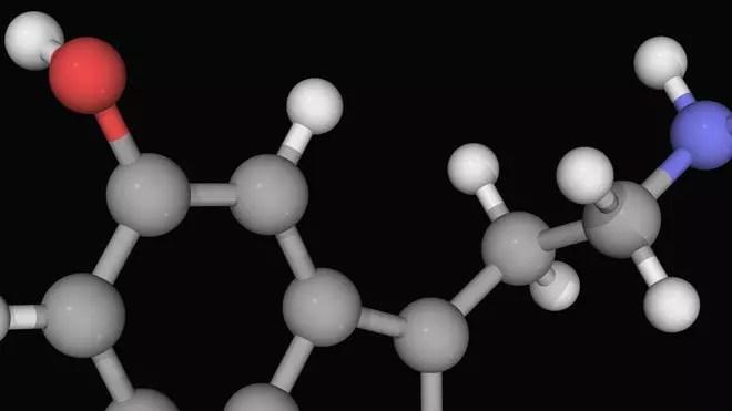 الدوبامين والسيروتونين .. غاية المدمنين