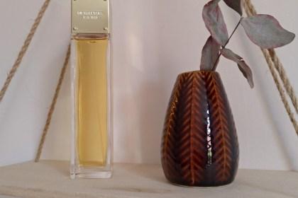 parfum sexy amber michael kors avis