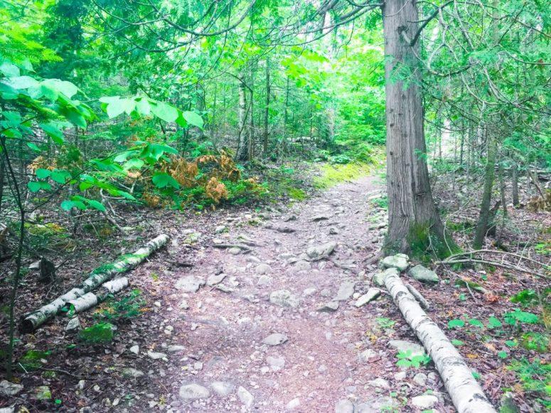 Bruce Peninsula National Park Marr Lake Trail