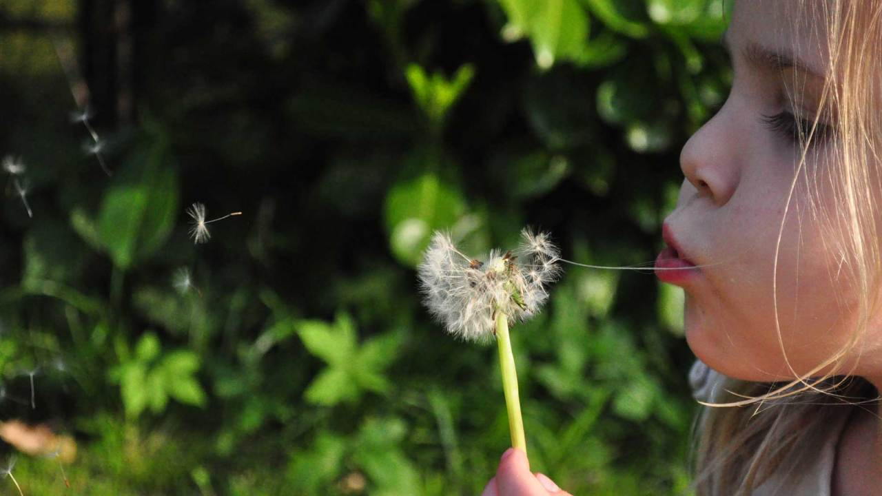 A kid with ADHD happily blowing on a dandelion after taking her ADHD meds
