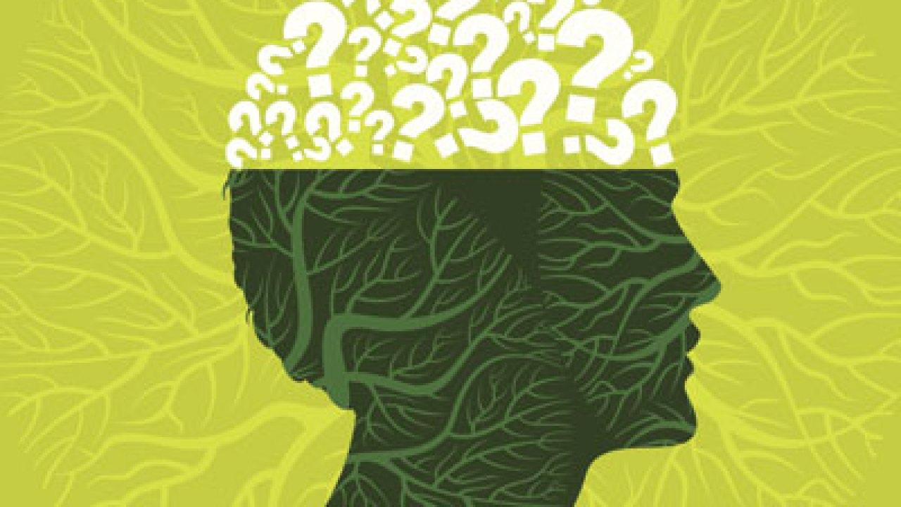An ADHD brain needs TLC.