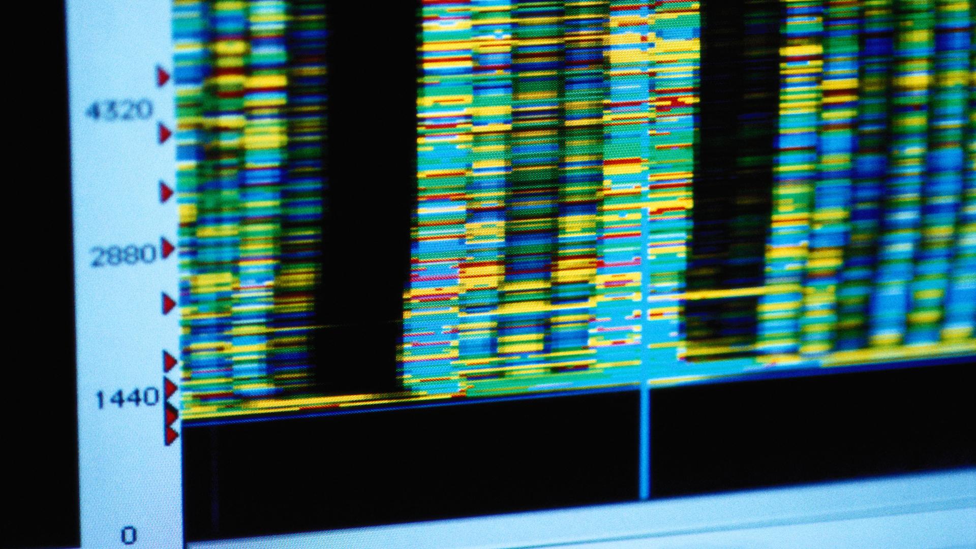 MTHFR: Understanding the ADHD-Genetics Puzzle
