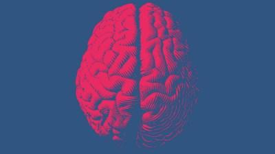 An image of a brain represents neurofeedback.