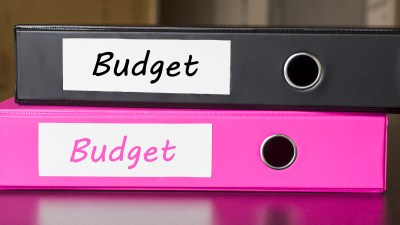 Two binders labeled 'Budget' to help adults with ADHD keep from spending too much money.