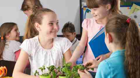 Three students with ADHD tend potted plants in class. Making friends is a great way to keep them from hating school.