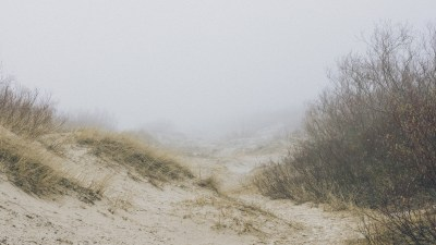 Bryan Hutchinson talks about his ups and downs, fog and clarity with ADHD