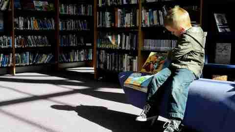 Boy Reading Children's Books