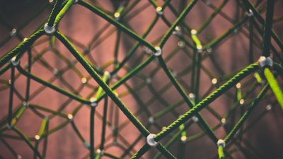 Caught in the net of learning disabilities