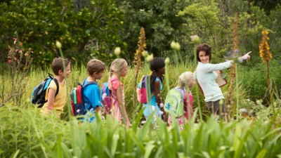 School children with ADHD wearing backpacks are led through lush forest by teacher pointing to something