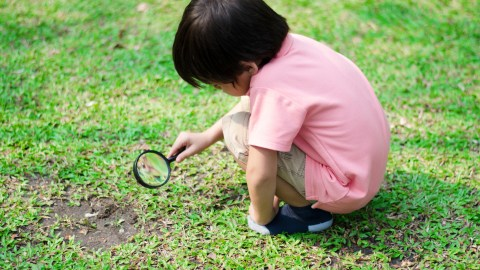 A young boy exploring grass with a magnifying glass as a result of positive parenting techniques that encourage him to pursue his interests