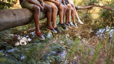 Group of kids sitting on a branch over summer