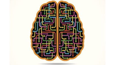 An illustration of a brain, and the complex pathways of ADHD emotions.