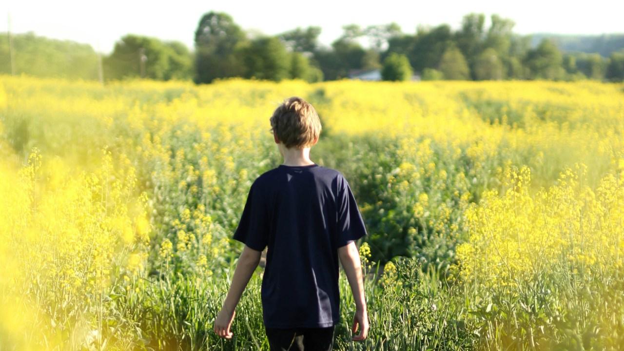 ADHD boy walking through field of flowers