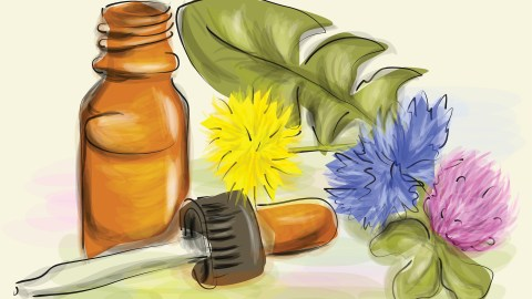 Homeopathy for ADHD: Popular Remedies, Scientific Evidence