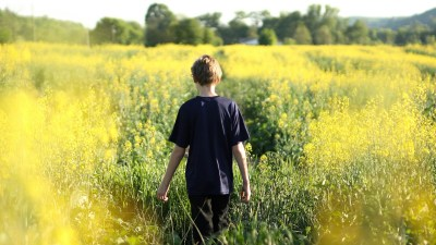 Alternative ADHD Treatments: Green Time & Children with ADHD
