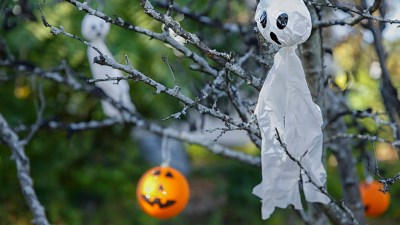 Halloween holiday decorations including a jack o lantern and ghost hang in a tree.