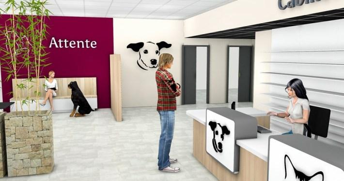 Cabinet-veterinaire-un-agencement-Adeco-Breizh-02