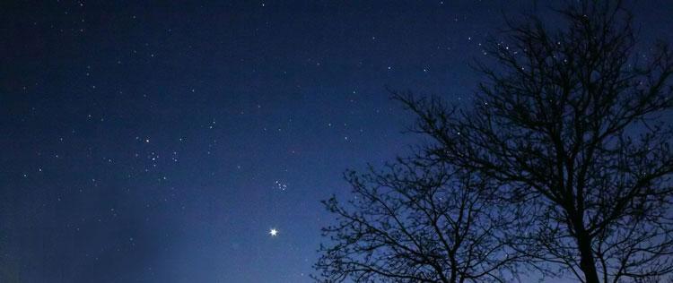 Venus_Taurob.jpg