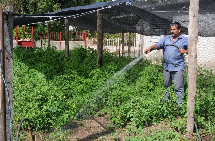 Agricultores camagüeyanos reafirmaron su compromiso