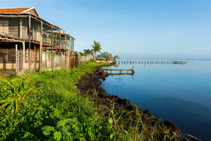 Enfrentar el cambio climático: prioridad en Camagüey